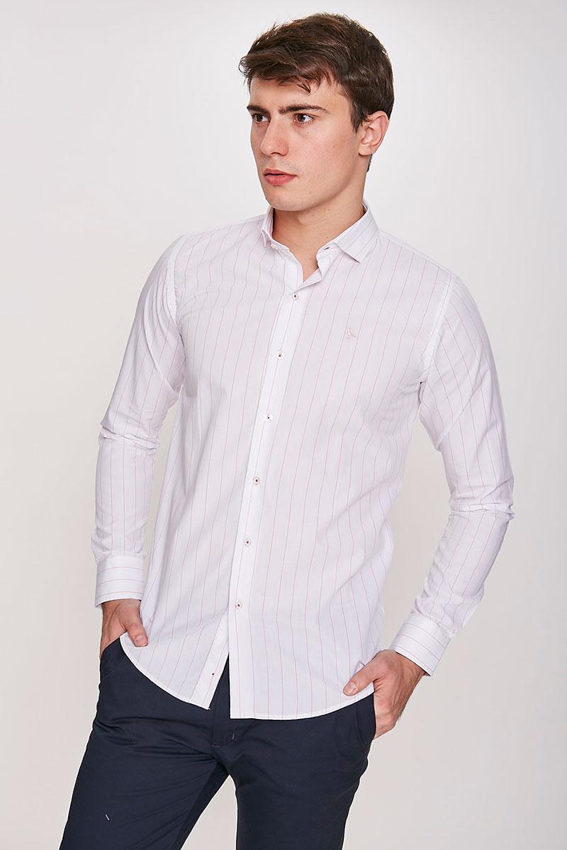 Camisa Tansel Classics